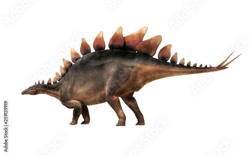 Stegosaurus, was a thyreophoran dinosaur Canvas Print