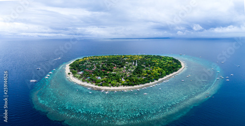 Obraz Aerial Drone Panorama Picture of Balicasag Island in Bohol in the Philippines - fototapety do salonu
