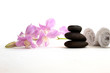 stone spa and orchid on white background