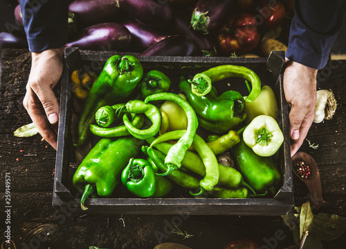 Farmer with green peppers Fototapeta