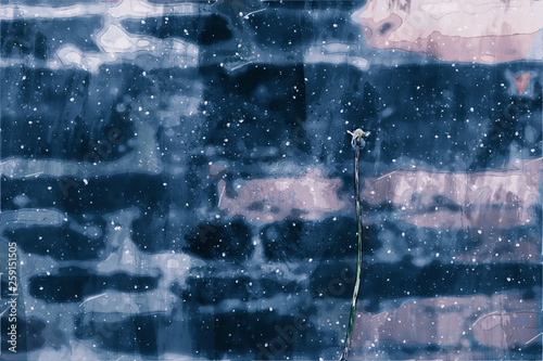 Fototapety, obrazy: Digital painting of white flower on cool tone background