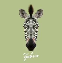 Zebra Wild Animal Face. Vector...