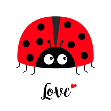 Red Lady Bug Ladybird Icon. Love Greeting Card With Heart. Cute Cartoon Kawaii Funny Baby Character. Happy Valentines Day. Flat Design. White Background.
