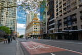 Fototapeta Na ścianę - street in the city of Sydney