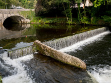 UK, England, Devon, Tavistock River Tavy