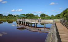 Wakodahatchee Wetlands A Birdw...