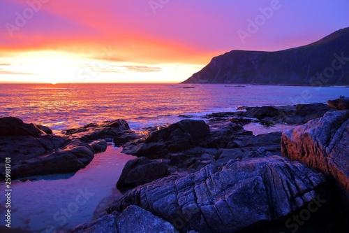 Foto auf AluDibond Rosa Lovey Lofoten sunset