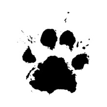 Paw Print Vector Paint Splatte...