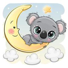 Cute Cartoon Koala On The Moon