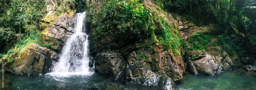 Fototapety, obrazy: La Mina Falls in El Yunque National Forest in Puerto Rico