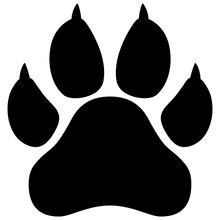 Wildcat Paw Print Vector Illustration