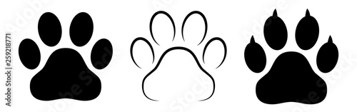 Photo  Different animal paw print vector illustrations