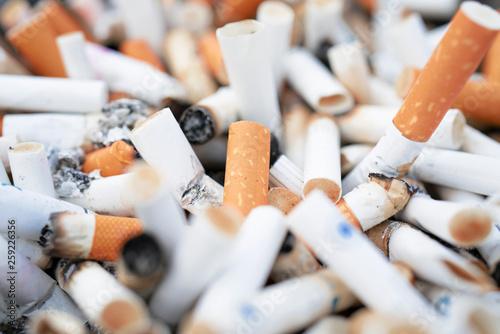 Fényképezés  Cigarette butts background / cigarette butts / cigarette
