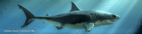 The menacing profile of a great white shark emerges from the depths of the deep blue sea Wallpaper Mural