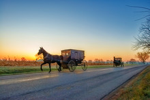 Amish Buggies At Daybreak On R...