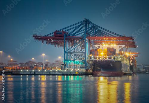 Fotografie, Obraz  Containerschiff im Hafen von Hamburg bei Nacht