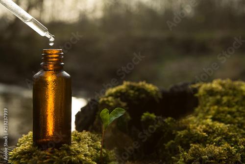 Fototapeta Natural remedies, aromatherapy - dropper & bottle. obraz