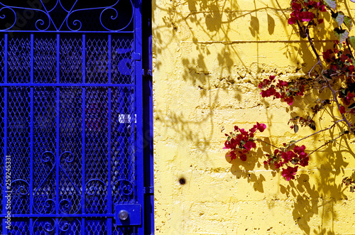 yellow concrete wall and steel blue door with flowers