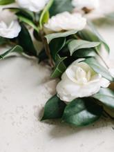White Camellias On Textured Background