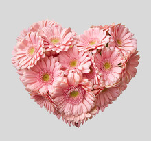 Bouquet Of Pink Transvaal Daisy In Shape Of Heart