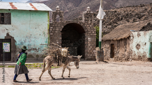 Fotografering Woman carry her backload donkey by the square of Andagua in the volcanos valley,