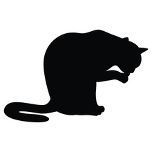 Vector Illustrations Of Silhouette Of A Cat Sitting And Washing