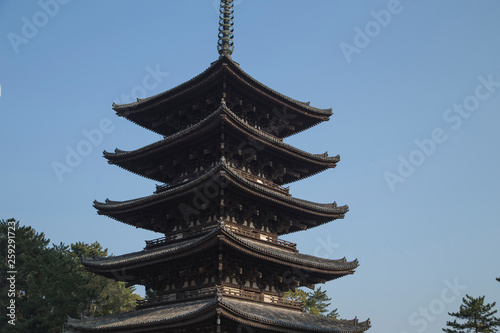 Fotografia  Buddhist Kofuku-ji pagoda in the city of Nara in Japan during the cherry blossom