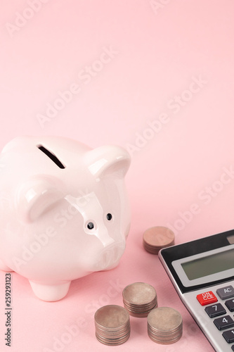 pink piggy bank and coins with calculator - 259293123