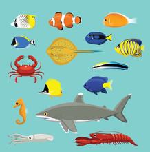 Cute Various Sea Reef Creature...