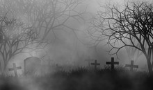 Scary Cemetery In Creepy Forest Illustration Halloween Concept Design Background