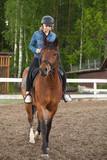 Fototapeta Konie - Caucasian teenage girl rides a horse