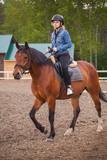 Fototapeta Konie - Beginner riding lessons, teenage girl
