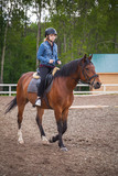 Fototapeta Konie - Horse riding lessons, teenage girl