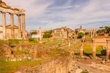 Roman Forum in Rome, Italy - 259298754