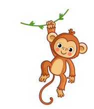 Monkey Hanging On Liana. Vecto...