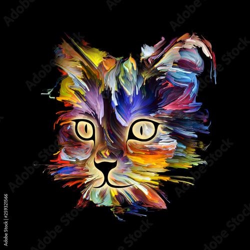 Fotografía  Funny Cat
