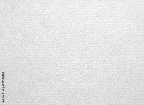 Obraz A sheet of ancient laid paper as background - fototapety do salonu