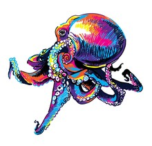 Octopus. Multicolored Sketch. Pop Art. Summer Print. Figured Markers.