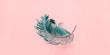 Leinwanddruck Bild - Tropical Curl Palm Leaf Background Flat Lay Top