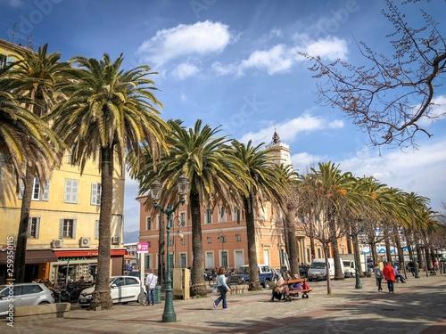 Staande foto Barcelona Palmen von Ajaccio