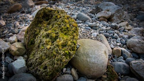 Photo grosse pierre avec de la mousse