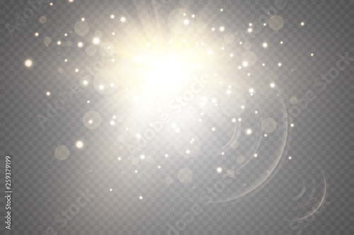Obraz Glow light effect. Starburst with sparkles on transparent background. Vector illustration. Sun - fototapety do salonu