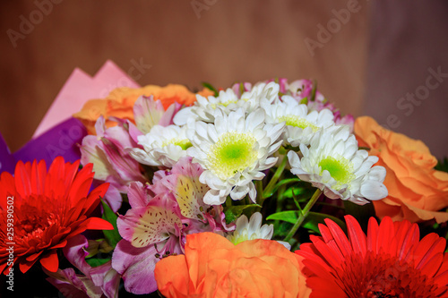 In de dag Poppy Bouquet of chrysanthemums and gerberas. Bouquet for the holiday. Ready bouquet of flowers.
