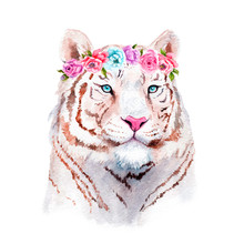 Watercolor Painting Of A White Tiger In Flowers