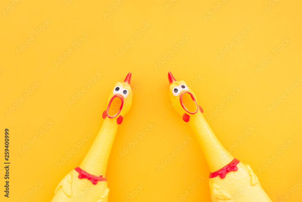Fototapety, obrazy: Two screaming chicken toys are isolated on a yellow background, screaming with a mouth open looking into the camera. Chicken toy on a yellow background, pattern for design.