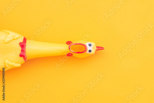 Fotografia  Squeaky chicken toy isolated on a orange background and copyspace