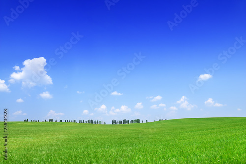 Foto auf AluDibond Dunkelblau Idyll, view of green fields and blue sky with white clouds