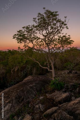 Fotografie, Obraz  Herrliche Lichtstimmung beim Sonnenuntergang im Granite Gorge Nature Park in Que