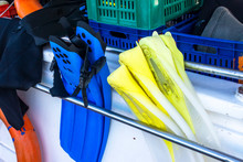 Flippers For Diving And Snorkelling On The Boat