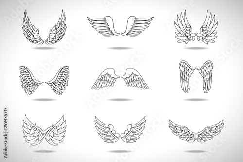 e251d838f Wings Sketch Set Isolated On Gray Background. Collection Of Hand Drawn Angel  Wings. Abstract